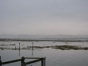 img_0761-red-misty-marshes